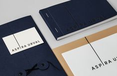 Logotype and stationery with coloured paper and board detail designed by BVD for banking, finance and insurance recruitment specialist Aspira Urval