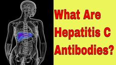 What are Hepatitis C Antibodies Liver Disease, Blood Test, Tips, Counseling