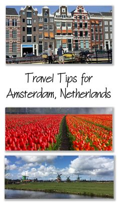 Travel Tips for Amst
