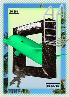 Kia Tasbihgou nog een blije dolphin wieieie