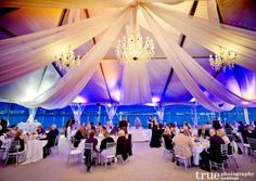 Gorgeous Drapery Ideas « David Tutera Wedding Blog • It's a Bride's Life • Real Brides Blogging til I do!