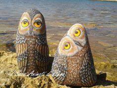Quirky painted owl rocks