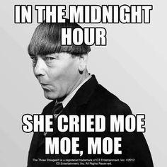 Moe.Moe,Moe