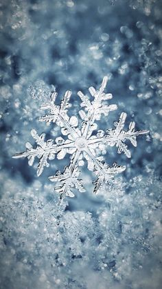Wallpaper iPhone #winter#beautiful snowflakes ❄️
