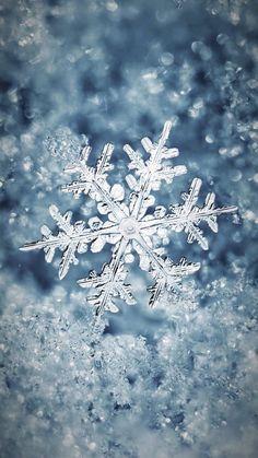 Wallpaper iPhone #winter#beautiful snowflakes ❄️