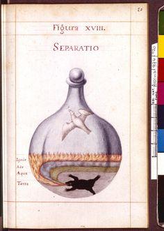 Figura XVIII - Separatio  - Sapientia veterum philosophorum, sive doctrina eorumdem de summa et universali medicina 40 hierogliphis explicata