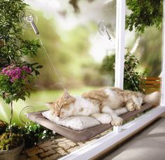 Sunny+Seat+Window-Mounted+Cat+Bed | Sunny Seat Window-Mounted Cat Bed
