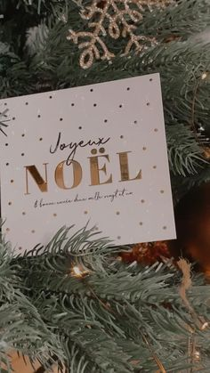 Découvrez nos cartes de Noël à glisser sous le sapin ⭐️🎄 #merrychristmas #joyeuxnoel #noel #noel2019 #christmas #cartedenoel #eucalyptus #christmascards #cards #christmas2019 #greetingcards #bonneannée #watercolor #watercolorarts #aquarelle #aquarellepainting #gifts #christmasgifts #christmasdecorations #cadeau #cadeauxdenoël Eucalyptus, Christmas Cards, Creations, Greeting Cards, Gift Wrapping, Gifts, Wedding Stationery, Happy Year, Fir Tree