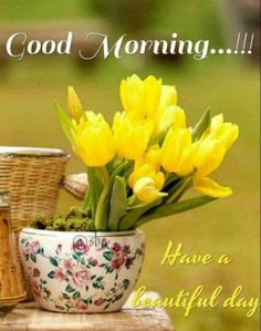 Beautiful Rose Flowers, Beautiful Flower Arrangements, Yellow Flowers, Beautiful Flowers, Good Morning Flowers Pictures, Good Morning Beautiful Images, Flower Pictures, Image Pinterest, Good Morning Wallpaper