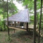 Dazzling Tuftex convention Other Metro Eclectic Deck Decorators with clear clear roof corrugated roof roof tiny house Treehouse tuftex