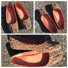 Leopard Shoes - Flats Size 10 Ballet flats in leopard pattern fabric, size 10. Average condition, top part looks great and a little worn on the heel. Great shoe that goes with everything. Great price!!! Shoes Flats & Loafers