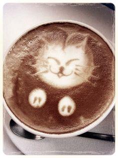 meow, kitty cat coffee