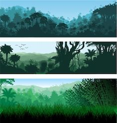 Find Vector Horizontal Tropical Rainforest Jungle Backgrounds stock images in HD and millions of other royalty-free stock photos, illustrations and vectors in the Shutterstock collection. Thousands of new, high-quality pictures added every day. School Murals, Stock Foto, Central America, Illustration, Royalty Free Stock Photos, Tropical, Backgrounds, Nature, Amazon Website