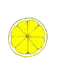 Lemon slice print citrus print watercolour by BernieandRoseArt yellow citrus wall art, lemon watercolour print, kitchen wall art, fresh citrus print, pen and watercolour lemon illustration, fruit art, simple lemon drawing