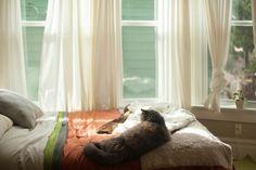 Francesca's Cozy & Refined Portland Studio Apartment