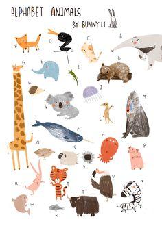 Alphabet Animal on Behance