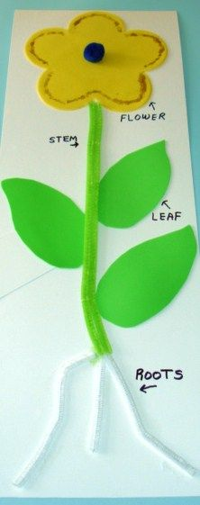 plants arts and crafts for preschool - Google Search