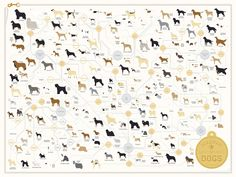 Pop Chart Lab --> Design + Data = Delight --> The Diagram of Dogs