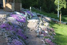 Natural stones and flowers supporting quite steep slope Stepping Stones, Natural Stones, Terrace, Sidewalk, Outdoor Decor, Flowers, Nature, Plants, Home