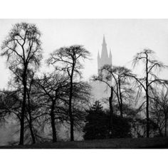 Scotland Glasgow Glasgow University silhouettes of trees on the foreground Canvas Art - (18 x 24)