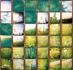 David Hockney: collage, utilizing design elements grid + texture | design principles:  rhythm, balance + unity