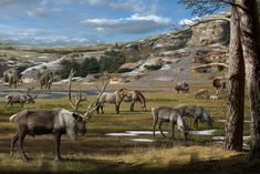 images of the earth in paleoindian times | Pleistocene landscape, including mammoth, horse, reindeer, bison and ...