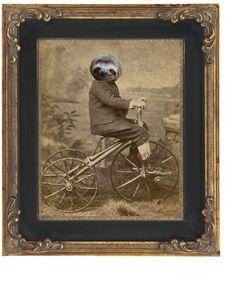 Sloth Bike Art Print 8 x 10  Victorian van fringepop op Etsy, $10.00