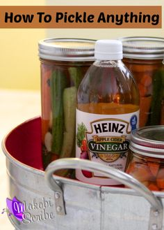 How to pickle anything Forrest Forrest Forrest 'Lemin' Heinz Vinegar Canning Tips, Canning Recipes, Jar Recipes, Chutney, Heinz Vinegar, Cider Vinegar, Canning Pickles, Canned Food Storage, Fermented Foods