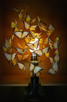 Wonderful Lighting By Alex Randall: A Table Lamp Made From A Flurry Of 50 Butterflies,  Hovering Above A Pesticide Canister.