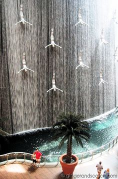 My favourite part of the Dubai Mall-The water feature designed by DPA architects.