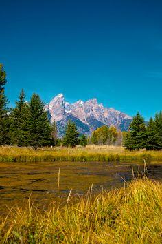 Bucks Wildlife Photography, Landscape