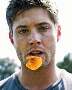 Jensen Freaking Ackles