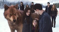 "New ""Breaking Dawn Part 2 still. Love this one! <3"
