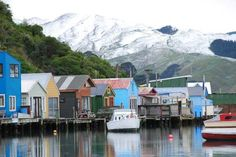 Paremata boat sheds on a rare day of snow in Wellington Boat Shed, Wellington New Zealand, August 15, Window Sill, Sheds, Kiwi, Dean, Mount Everest, Gardens