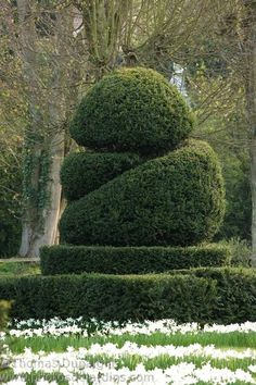 Abstract Topiary Form | Château d'Ambleville | photo Thomas Dupaign