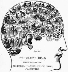 brain... very cool graphic!!