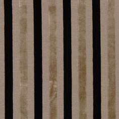 Stripe- Accent