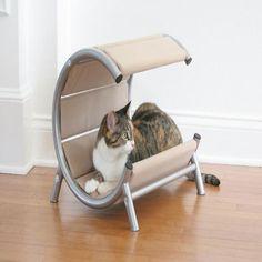 Modern Cat Designs Cat Condo