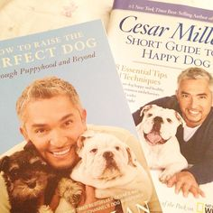 ❥ Happy dog books by Cesar Milan, via Shabbyfufu.com