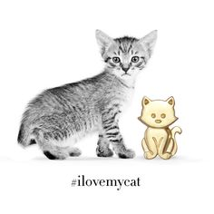 Happy National Cat Day! We hope you have a purrrrrfect day!  #nationalcatday #ilovemycat #alexwoo #littleicons #kitten #lovegold #madeinny   http://www.alexwoo.com/little-animals-kitten-in-14kt-yellow-gold.html
