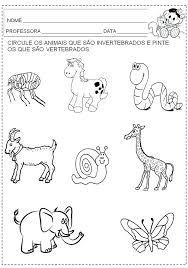 Resultado De Imagem Para Animales Oviparos Y Mamiferos Preescolar