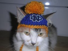 Crocheted Notre Dame Dog or Cat Hats by Fancihorse on Etsy, $6.00