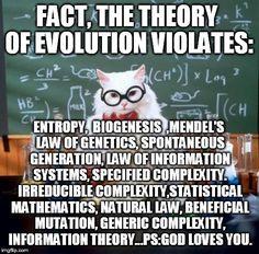 Chemistry Cat Meme - Imgflip