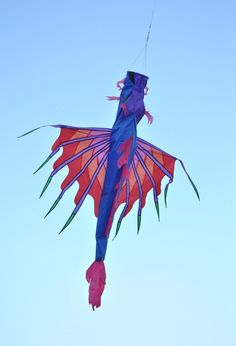 Colorful    #dragon  #kites