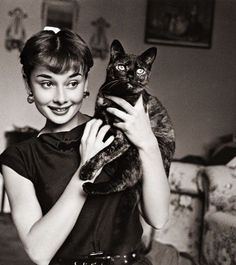 Famous People With Cats.famous people and cats Audrey Hepburn I Love Cats, Crazy Cats, Patricia Highsmith, Celebrities With Cats, Celebs, Audrey Hepburn Photos, Aubrey Hepburn, Animal Gato, Photo Vintage