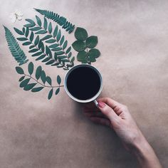 Good morning! ☕️