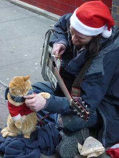 Ein frohes Weihnachtsfest mit:  Streetcat Bob und James Bowen