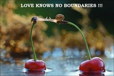 Love knows no boundaries !