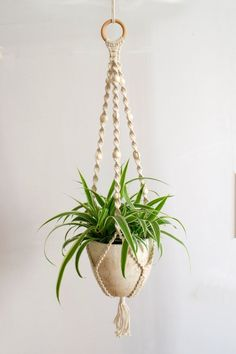 Handmade and beautiful macrame plant hanger. This plant holder combines braided cotton and beads to make a retro looking plant holder.  The total