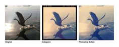 Free Photoshop Actions that mimic Instagram filters